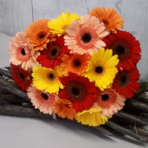 Букет цветов Герберы микс 17 шт.