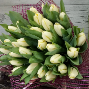 Букет цветов Тюльпаны 35шт.